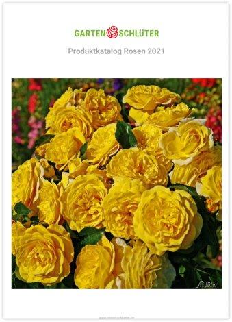 Baldur Garten Katalog Of Pflanzenversand Katalog